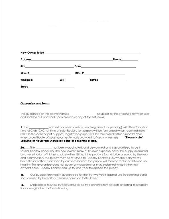 dog breeding contract template - breeding agreement contract choice image agreement